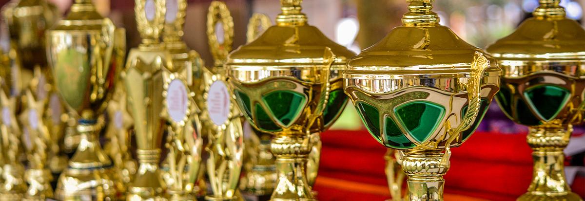 Ponúkame široký výber pohárov, trofejí, medailí, športových potrieb pre rôzné druhy športov.